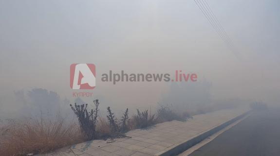 Πυρκαγιές σε Τσάδα και Φοίτη έθεσαν σε συναγερμό τη Πυροσβεστική