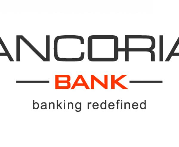 d58567f6c502 Ancoria Bank  Διορισμός νέου Προέδρου στο Διοικητικό Συμβούλιο της Ancoria  Bank